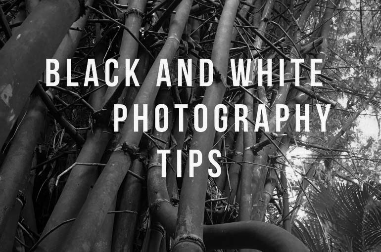 4 Black and white Photography tips, Black and white Photography tips, Photography, BW photography, Beauty, fitness, food, photography, travel, awareness